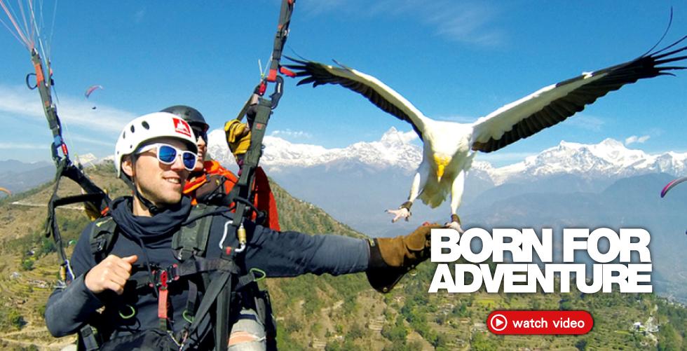 Onepolar_Born For Adventure